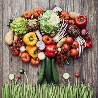 Sternenfutter - vegetarisches Dinner